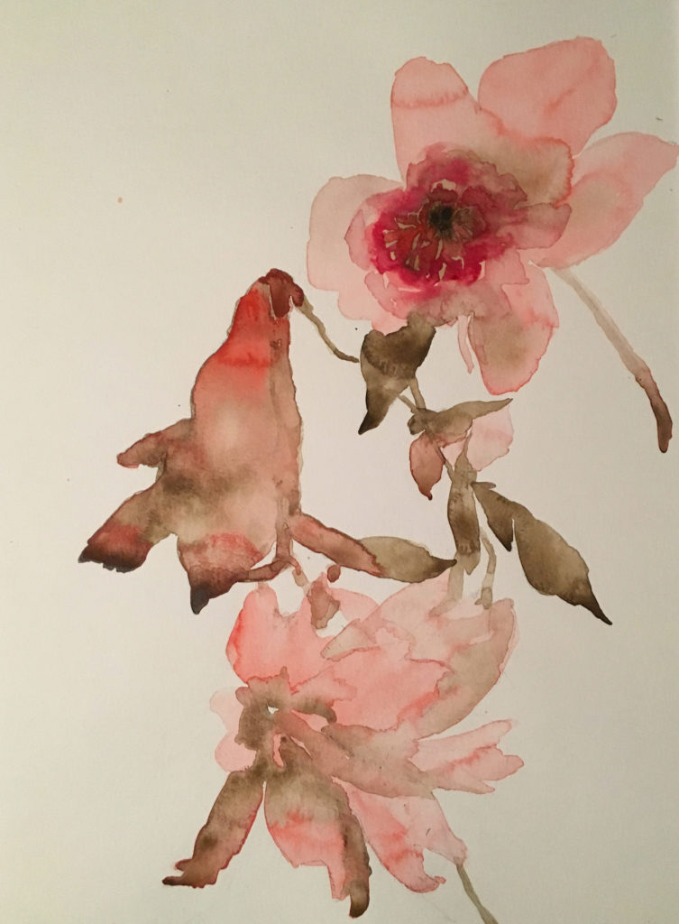 Peony Lily Cosmos watercolor by Betsyness Studio